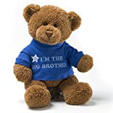 Gund Gift For Brothers - Best Reviews Guide
