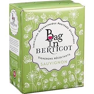 Terre-de-Vignerons-Bag-in-Berticot-Sauvignon-Blanc-IGP-NV-trocken-1-x-3-l