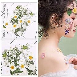 Tatuajes temporales de tatuaje Bricolaje pequeño paquete de material de flores secas en relieve planta de flores reales for decoración de hermosas damas Tatuajes temporales