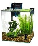 Penn-Plax Vertex Acuario Kit para pescado y camarones con filtro,...