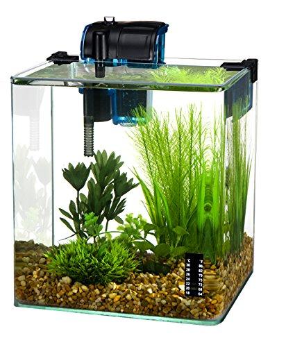 Penn Plax Vertex Acuario Kit para pescado y camarones con filtro, termómetro, escritorio Tamaño 2,7l