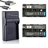 DSTE 2-Pack Backup Energy USB Travel Kit for Sony NP-F570 NP-F550 NP-F530 NP-F330