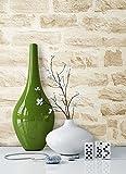 NEWROOM Papel pintado efecto piedra beige vellóntapete crema Natur Struktur Stein hermoso diseño moderno 3d mirada, incluyendo papel tapiz guía