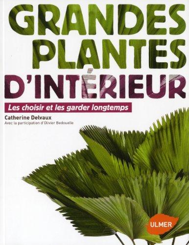 grandes-plantes-dintrieur-les-choisir-et-les-garder-longtemps
