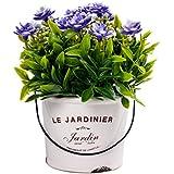 Scrafts Purple Dry Flower Arrangement Ceramic Base Artificial/Dry/Faux Flowers Arrangement For Home Décor/Living Room Décor/Table Décor/Office Décor/Wedding Décor/Party Décor. LBH(inches)=3X3X5