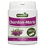 Chardon-Marie - 480 mg - 200 gélules
