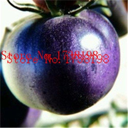 GRAINES TOMATE Cerise Pêche Poire Tomate semence de Big promotion Hot Violet Noir Rouge Jaune Vert Non-GM Organic Bonsai alimentaire pla