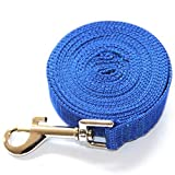 Dimart Durable Lange Nylon Haustier-Hundeleine - ideal f¨¹r Schulungen, Play, Camping, Garten - (30ft, Blau)