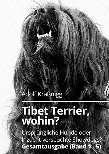 Tibet Terrier wohin?: Ursprüngliche Hunde oder Inzucht verseuchte Showdogs