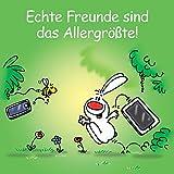 Echte Freunde sind das Allergrößte!: Cartoon-Geschenkbuch über wahre Freundschaft.