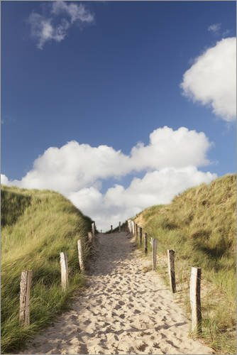 Posterlounge Acrylglasbild 80 x 120 cm: Sylt, Weg durch Dünen von Markus Lange - Wandbild, Acryl Glasbild, Druck auf Acryl Glas Bild