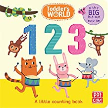 123: A little counting board book with a fold-out surprise (Toddler's World)