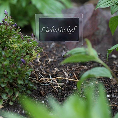 Verre acrylique pflanz Panneau Dual rectangulaire incolore/Gris Transparent – Choix + nom au choix – wetterfeste Herbes Plante, fiche Liebstöckel