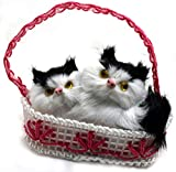 Al Johra Kitten on Mat Home Decoration Showpiece