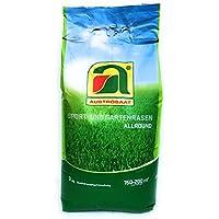3kg   Jugar y Garden Lawn Seed   para hasta 200m2 de césped soñado   mezcla Allsound de alta calidad   ahora precio especial de invierno