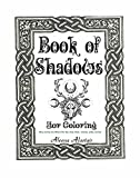 Book of Shadows: Wicca Journey into Wheel of the Year, Gods, Herbs, Incenses, Zodiac, and Oils (English Edition)