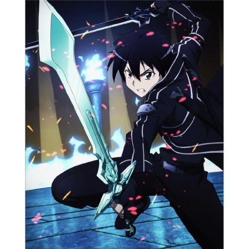 Sword Art Online (14inch x 18inch / 35cm x 44cm) Silk Print Poster - Soie Affiche - D314D4