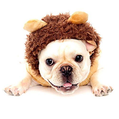 Imagen de selmai chihuahua ropa traje de cosplay disfraz de perro león perro abrigo con capucha trim alternativa