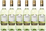 Andes Chardonnay Weißwein trocken