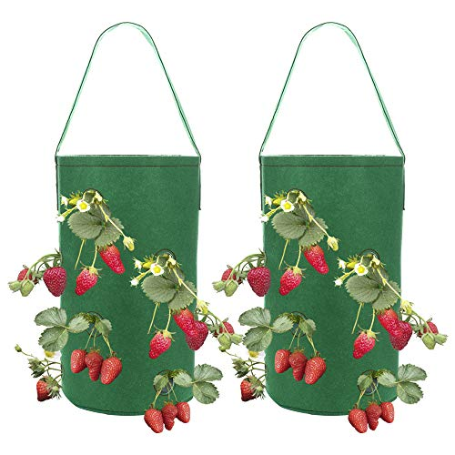 louisayork, confezione da 2 fioriere per fragole da appendere, con tasca, vaso per piante per fragole, vasi in tessuto per coltivare pomodori, erbe, fiori, fragole, feltro, green, 38 * 22