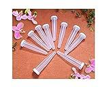 100 Stück Orchideenröhrchen 24ml Blumenröhrchen