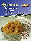 Sperli Gemüsesamen Zuckermelone Caribbean Gold, F1, grün