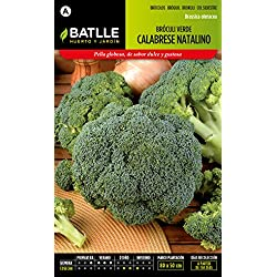 Semillas Batlle 010905BOLS - Bróculi verde Calabrese