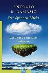 Der Spinoza-Effekt: Wie Gefühle unser Leben bestimmen