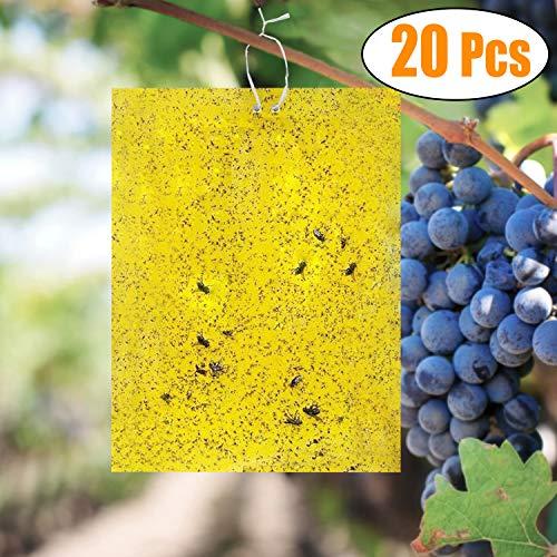 kimimara 20 pcs trappole appiccicose,biadesivo trappole per insetti per parassiti delle piante,colore giallo double face(20pcs cravates twist incluse)