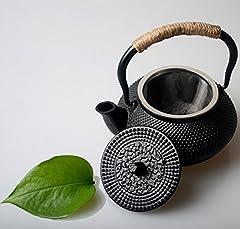Idea Regalo - HwaGui POT del tè del ghisa con l'infusore dell'acciaio inossidabile Teiera giapponese per il tè verde organico 300ML/10oz