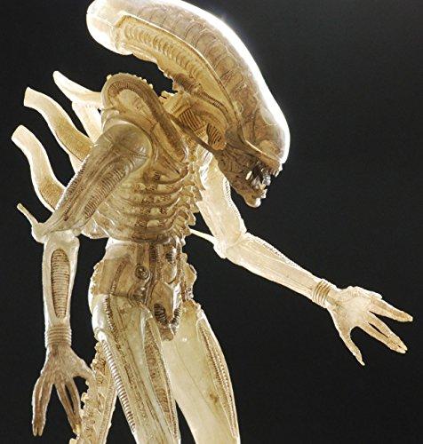 Caja Figuras Alien Avp Serie 7(14) 4