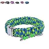 BelloBand Hundeleine Set aus Paracord / Führleine mit Hundehalsband für große Hunde / Farbe: Grün / 50cm ø