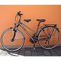 BISOMO Fahrrad Kindersitz für Vorn mit Gutachten bei Damen und Herren Fahrrad