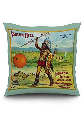 north-pomona-california-indian-hill-brand-citrus-label-20x20-spun-polyester-pillow-case-custom-borde