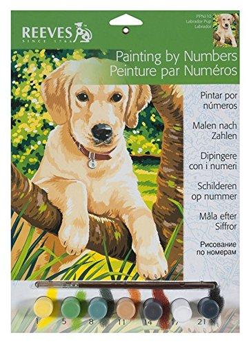Mammut PPPNJ10 - Malen nach Zahlen klein Junger Hund