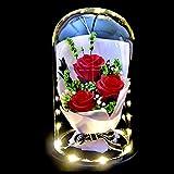 HELA Fait Main Fleur conservée Rose éternelle avec lumières LED et Coffret Cadeau 20CM (3 Rose/Bouquet)...