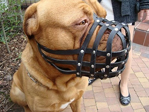 Luz Piel perro Bozal para Dogue de burdeos y Bullmastiff y otros
