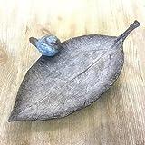 Avocado Stein Vogel auf Einem Blatt