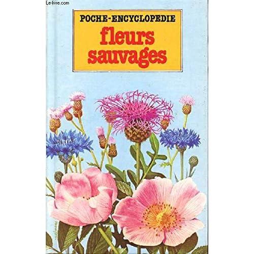 Fleurs sauvages (Poche-encyclopédie)