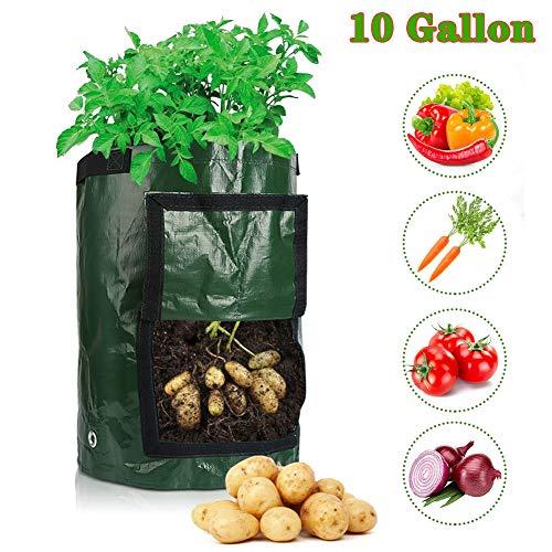 Pflanzbeutel 10 Gallonen (2-PACK) Pflanzsack aus Vliesstoff Biologisch Abbaubar Durable Pflanz Taschen