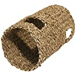 Rosewood Boredom Breaker Small Animal Activity Hyacinth Tunnel, Small 2