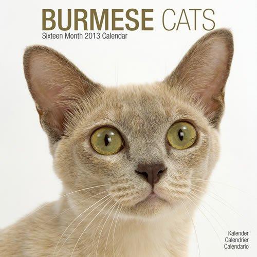 Cats Burmese 2013 por Avonside Publishing