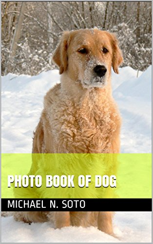 photo-book-of-dog-photo-book-of-dog-english-edition