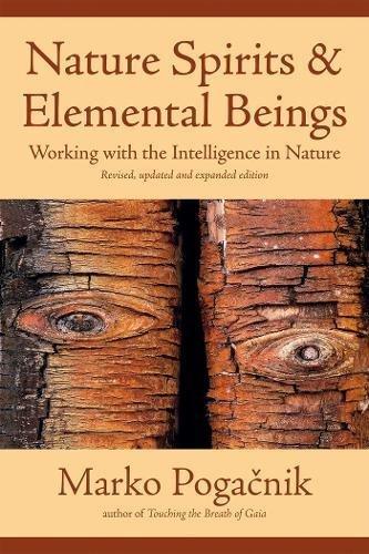 Zoom IMG-3 nature spirits elemental beings working