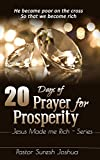 20 DAYS OF PRAYER FOR PROSPERITY: JESUS MADE ME RICH-SERIES (PROSPERITY SERIES)