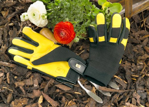 gold-leaf-soft-touch-gloves-ladies