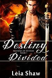Destiny Divided (Shadows of Destiny Book 1) (English Edition)