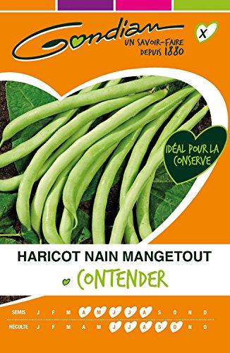 Gondian 64205 CP X ou CP 1 Semences Haricot Nain Mangetout Contender Vert - 250g (environ 490 graines)