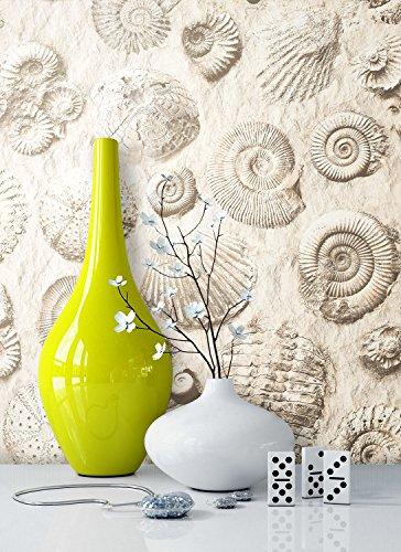 tapete-vinyl-antik-beige-muscheln-schone-edle-tapete-im-natur-design-moderne-3d-optik-fur-wohnzimmer
