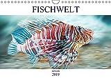 Fischwelt - Artwork (Wandkalender 2019 DIN A4 quer): Kunterbunte Fischportraits künstlerisch dargestellt. (Monatskalender, 14 Seiten ) (CALVENDO Tiere)